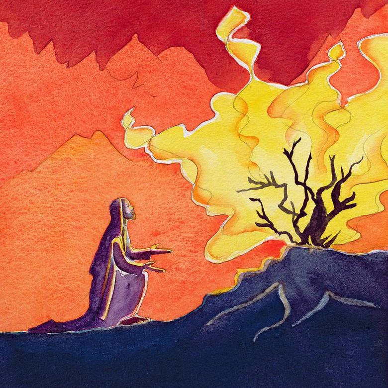 Moses Burning Bush 2